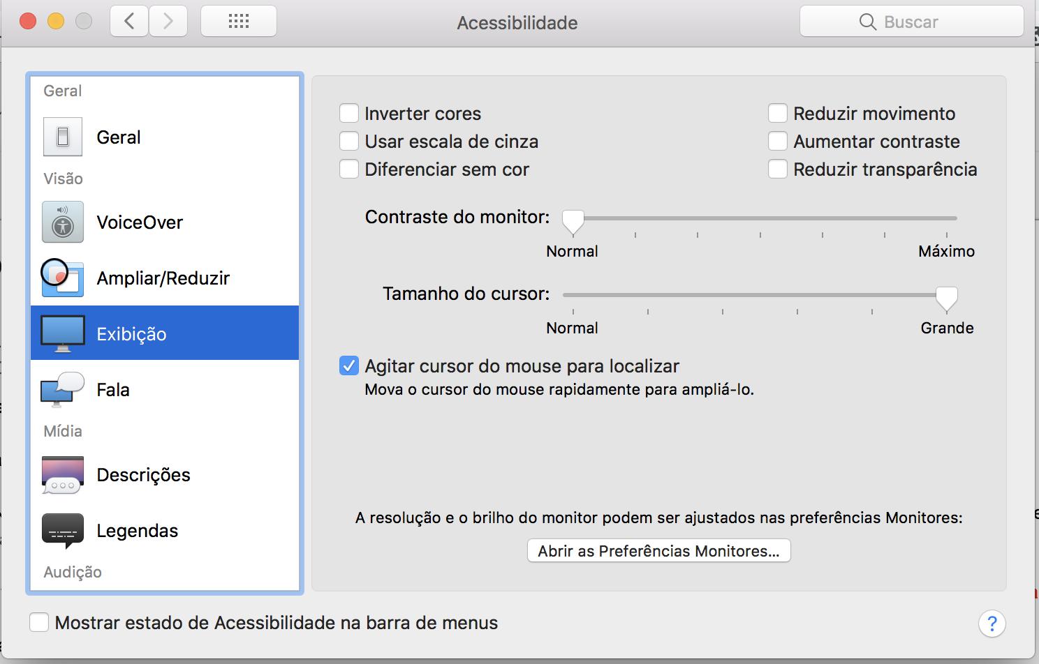 """Janela de opções de acessibilidade, aba lateral """"Exibição""""."""