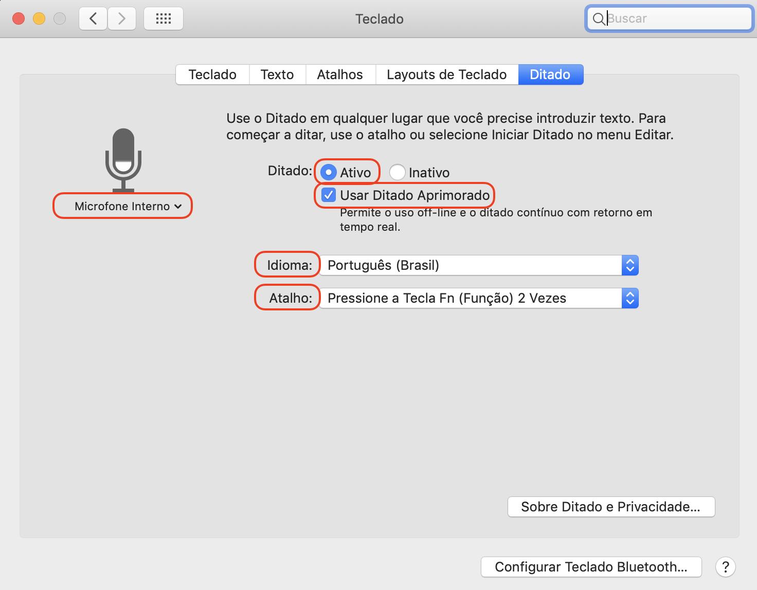 Caixa para ativar o Ditado, contendo opção de escolha do microfone, escolha do idioma e uso do ditado aprimorado